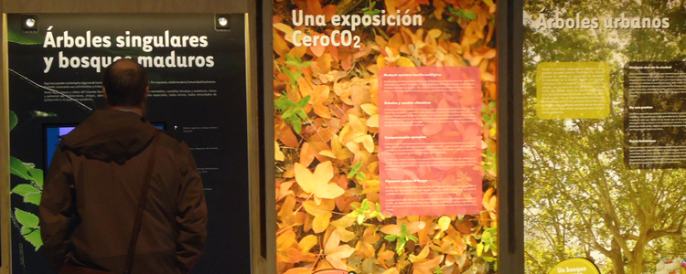 Exposición EnArbolar
