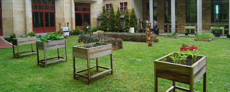 Taller Jardín en miniatura